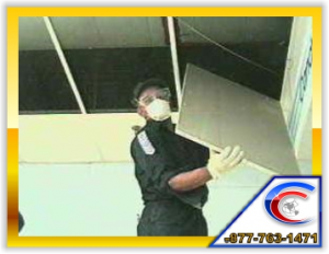 We Replace Water Damaged Ceiling Tile during the Cleaning and Remodeling Process