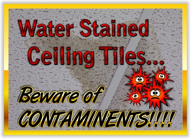 Water Stain Ceiling Tile should be replaced because they are a health risk.